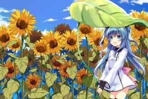 long hair, Blue hair, Blue eyes, Anime, Anime girls, Sora no Method, Noel (Sora no Method), Dress, Sunflowers
