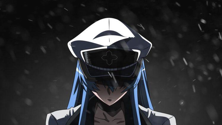 Akame Ga Kill Anime Girls Esdeath Hd Wallpapers Desktop