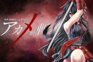 Akame ga Kill!, Anime girls, Akame