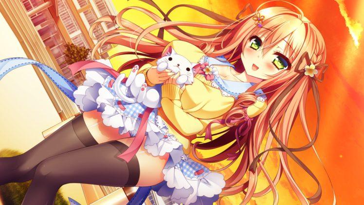 brunette, Anime girls, Cat, Yellow t shirt HD Wallpaper Desktop Background