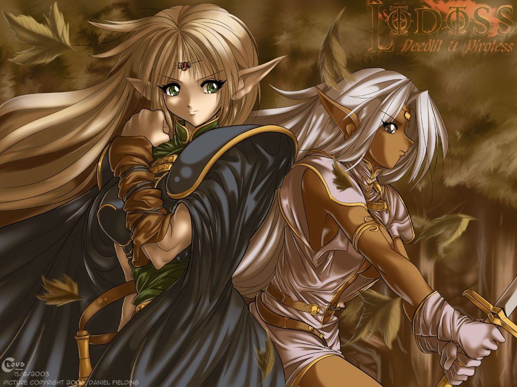 Anime Record Of Lodoss War Hd Wallpapers Desktop And Mobile