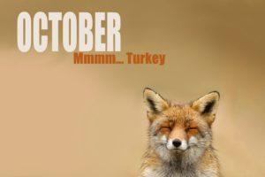 october, Month, Fox