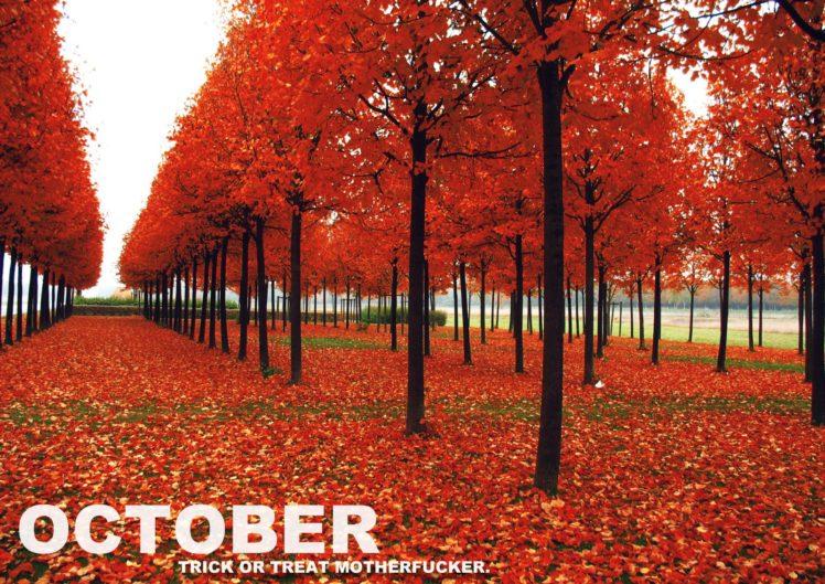 october, Month HD Wallpaper Desktop Background