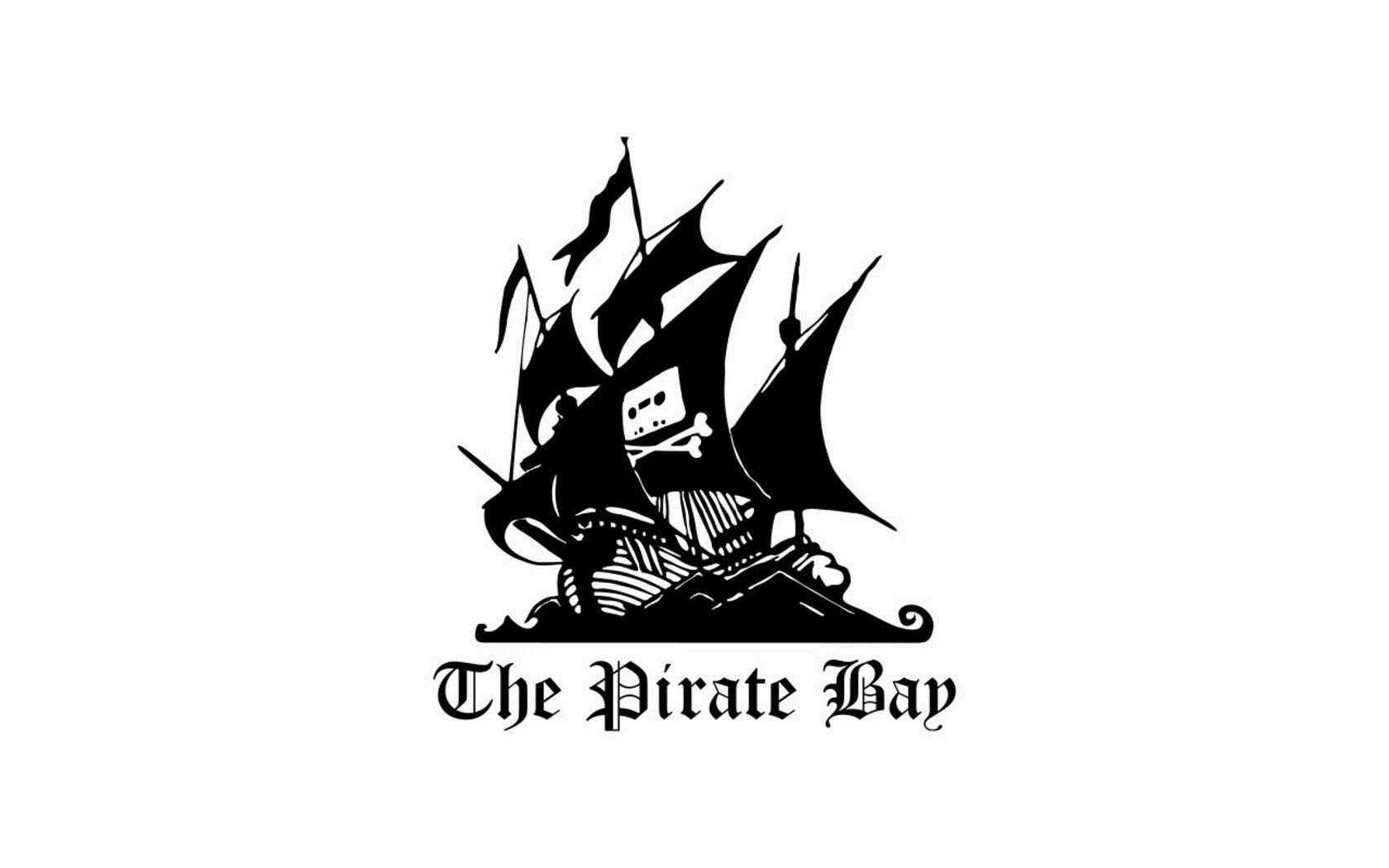 the pirate bay case study