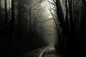 road, Dark, Trees