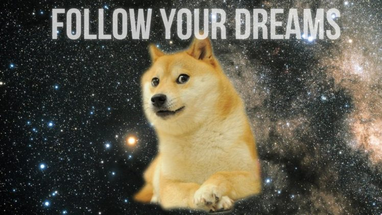 doge, Inspirational HD Wallpaper Desktop Background