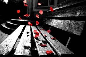 petals, Sad
