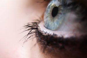 depth of field, Macro, Eyes