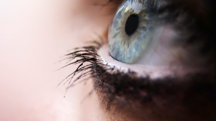 depth of field, Macro, Eyes HD Wallpaper Desktop Background