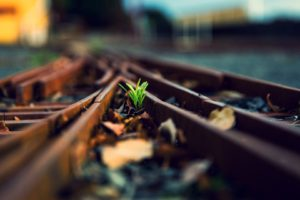 depth of field, Railway, Macro