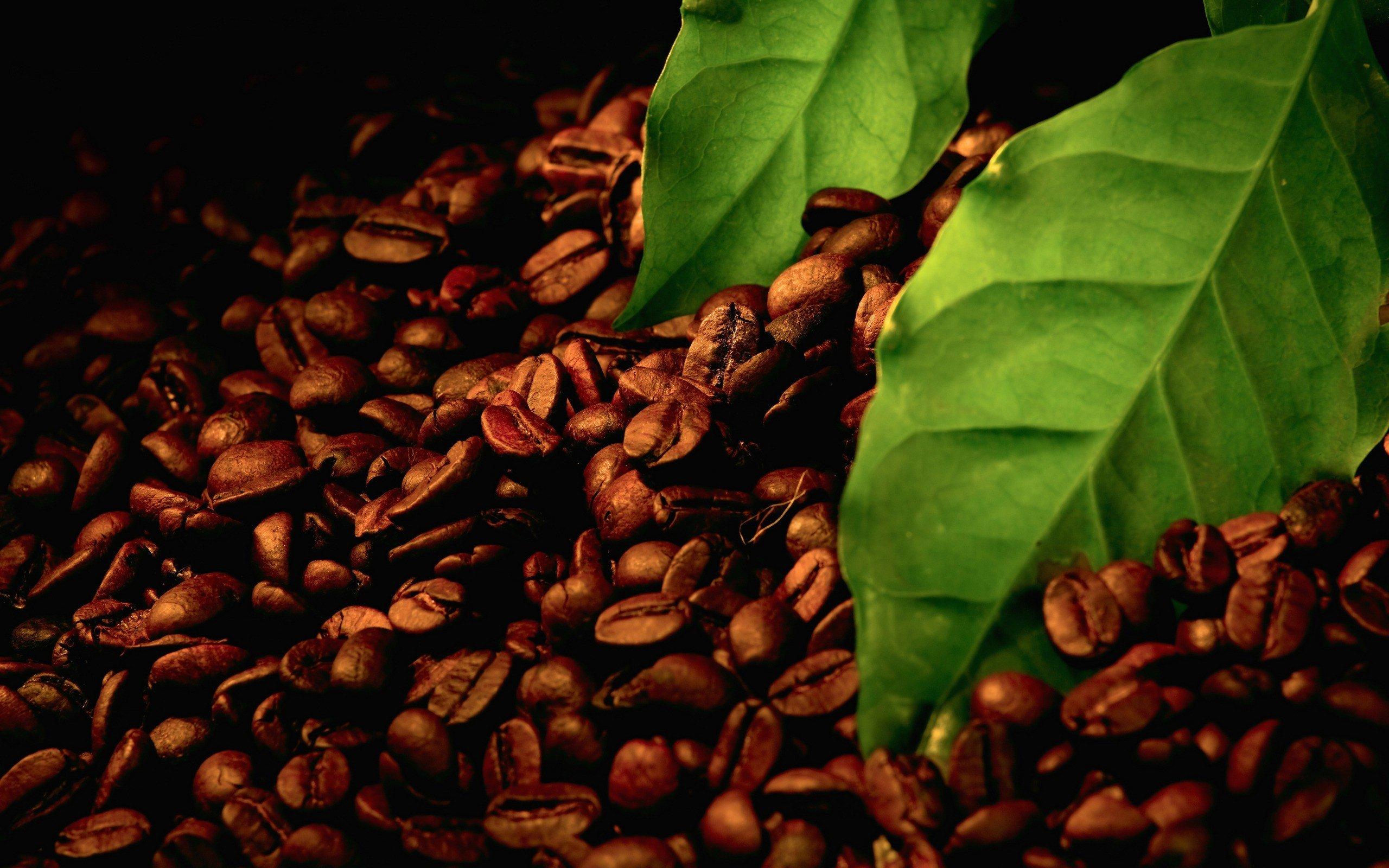 macro, Coffee beans, Leaves HD Wallpapers / Desktop and ...