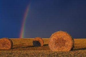 rainbows, Haystacks, Field, Sunlight