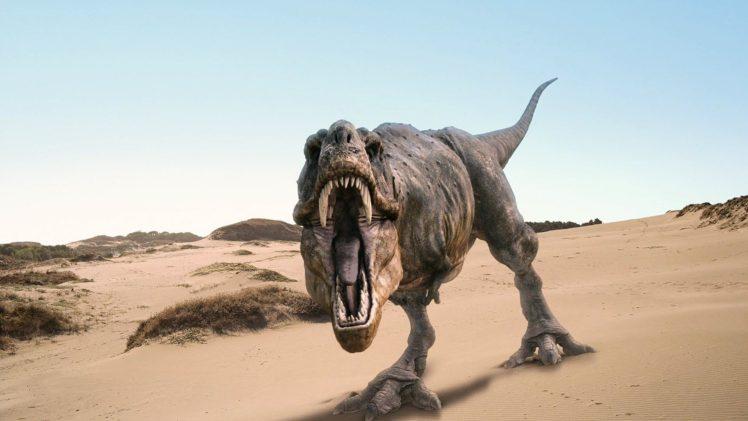 dinosaurs, Tyrannosaurus rex HD Wallpaper Desktop Background