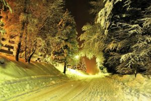 road, Snow, Trees, Lights