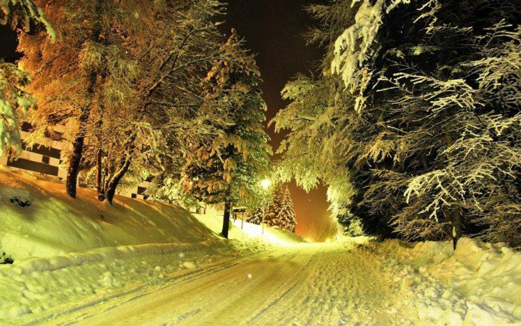 road, Snow, Trees, Lights HD Wallpaper Desktop Background