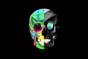 Facets, Justin Maller, Skull, Black background