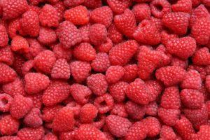 berries, Raspberries