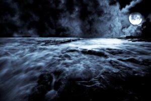 spooky, Mist, Night, Moonlight