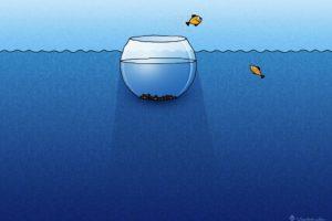 Vladstudio, Fishbowls, Fish, Water