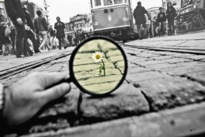 photography, Selective coloring