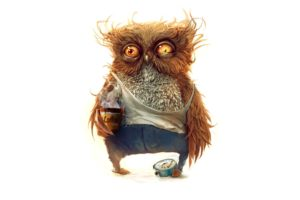 coffee, Owl, Morning