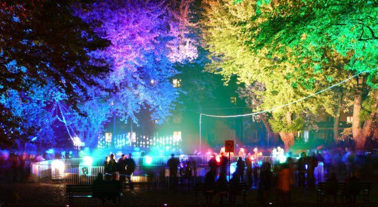 colorful, Trees, Lights HD Wallpaper Desktop Background