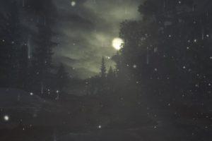 minimalism, Blurred, Trees