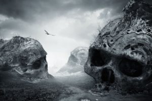 nature, Landscape, Dirtroad, Death, Monochrome, Birds, Flying, Dark, Skull, Photo manipulation