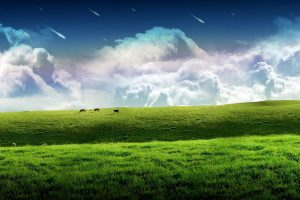clouds, Grass, Hills, Cow, Panorama