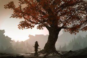 landscape, Samurai