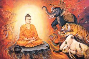 Buddha, Enlightenment