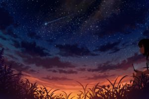 anime, Anime girls, Sky, Stars, Sunset, Cellphone