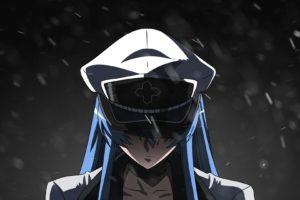 Akame ga Kill!, Anime girls, Esdeath