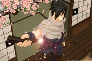 Naruto Shippuuden, Anime, Manga, Uchiha Sasuke